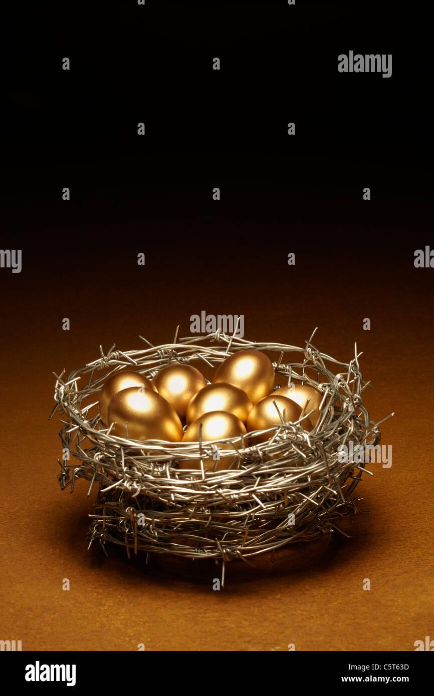 Nido Concetto di uovo che simboleggia la sicurezza Immagini Stock