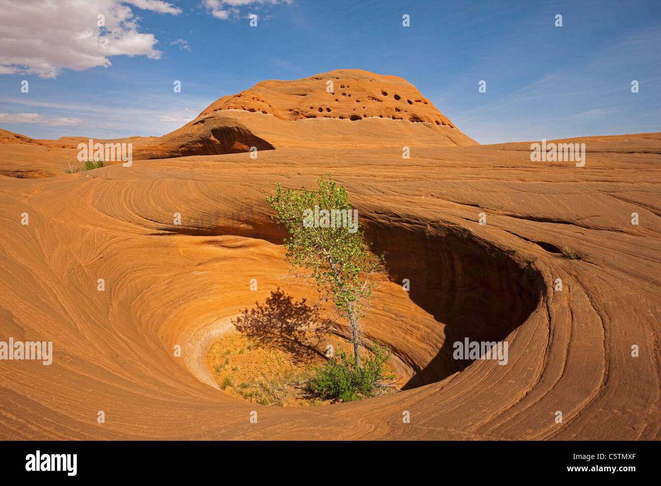 Stati Uniti d'America, Utah, Scalone Escalante National Monument, Dance Hall Rock, paesaggio roccioso Immagini Stock