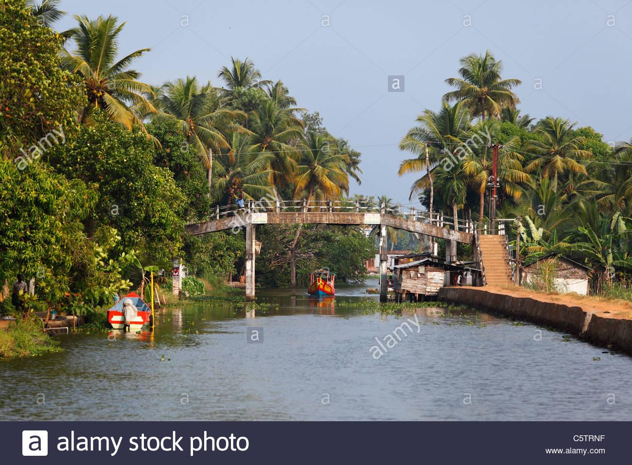 India Kerala, Alappuzha, Vista delle backwaters di alleppey Immagini Stock