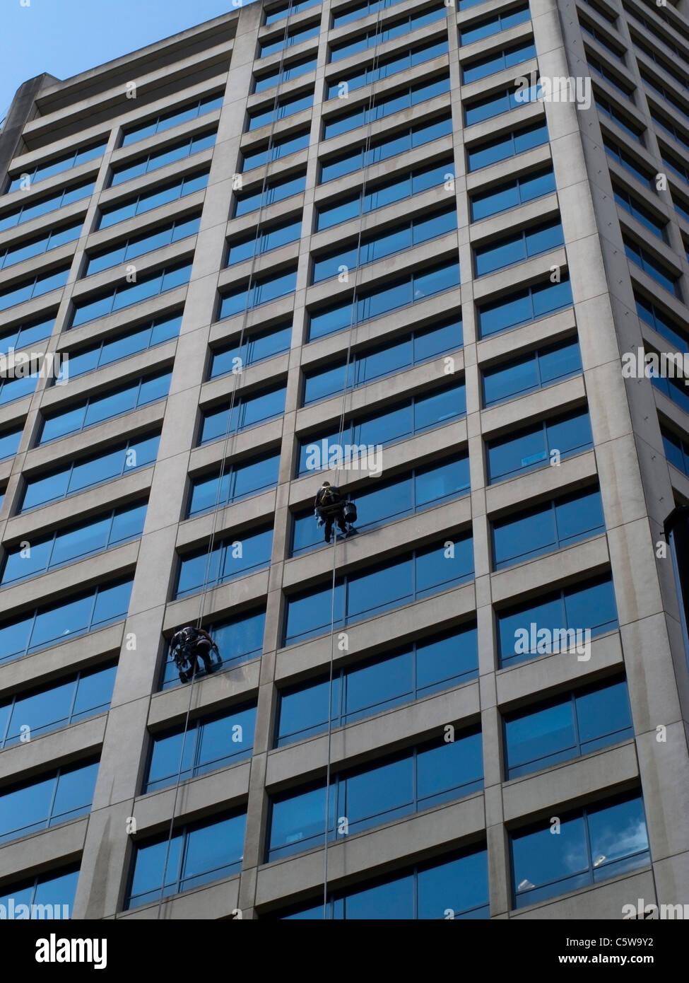 Gli uomini la pulizia di vetri di Tall Blocco ufficio -1 Immagini Stock