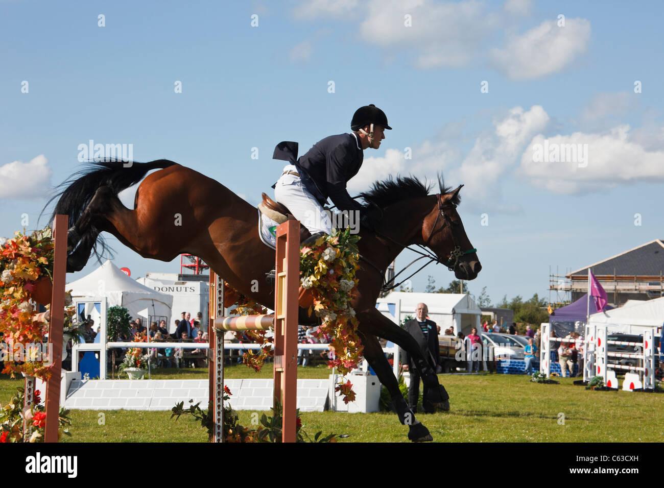 Il nord del Galles, UK. International Show Jumping evento con cavallo e fantino saltando su salti ad Anglesey mostrano Immagini Stock