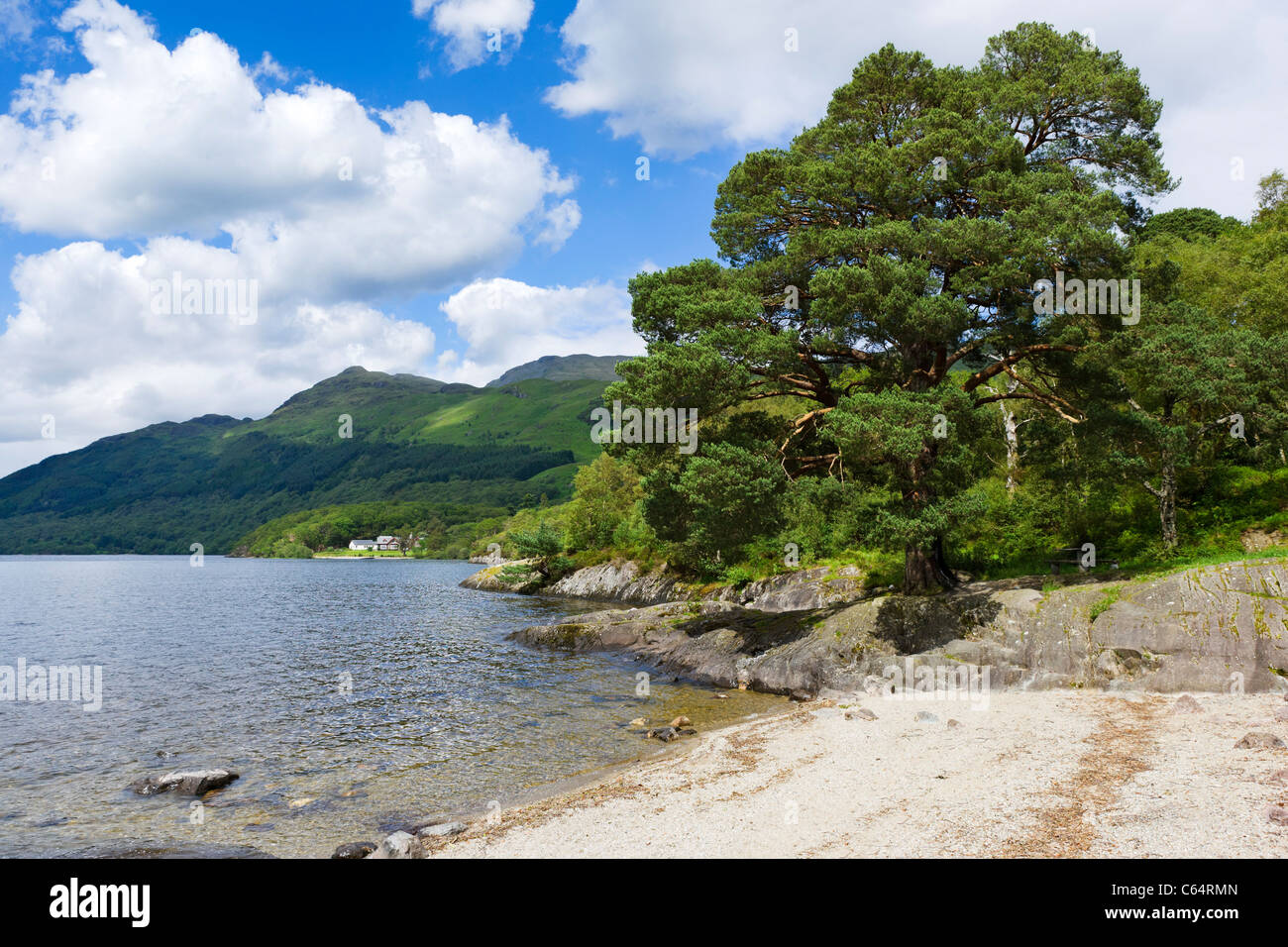 La sponda orientale del Loch Lomond a Rowardennan, Scotland, Regno Unito Immagini Stock