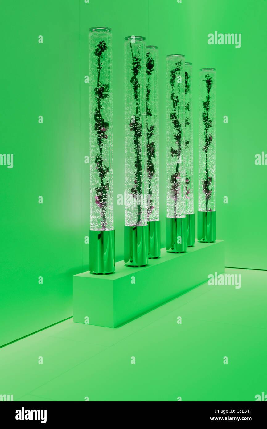 Decorazione, exhibition decorazione, auto show, International Motor Show di Ginevra 2011, Ginevra, Svizzera, Europa Immagini Stock