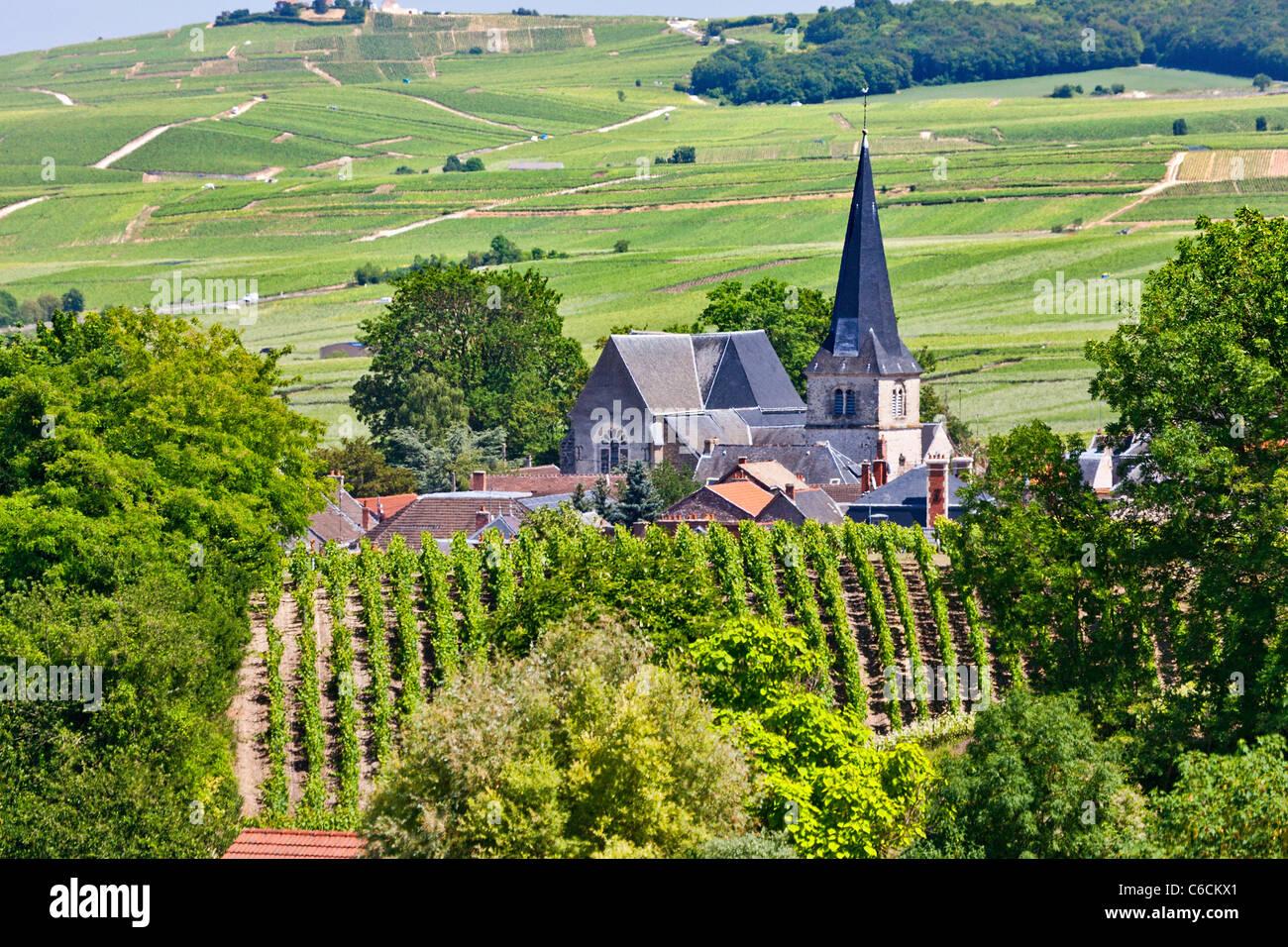 Francia, Marne, Rilly la Montagne, un villaggio vicino a Reims associato con lo champagne vino Immagini Stock