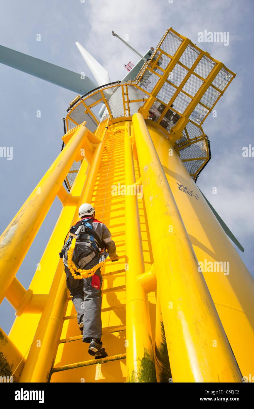 Un ingegnere che si arrampica su un pezzo di transizione di una turbina eolica sulla Walney offshore wind farm Immagini Stock