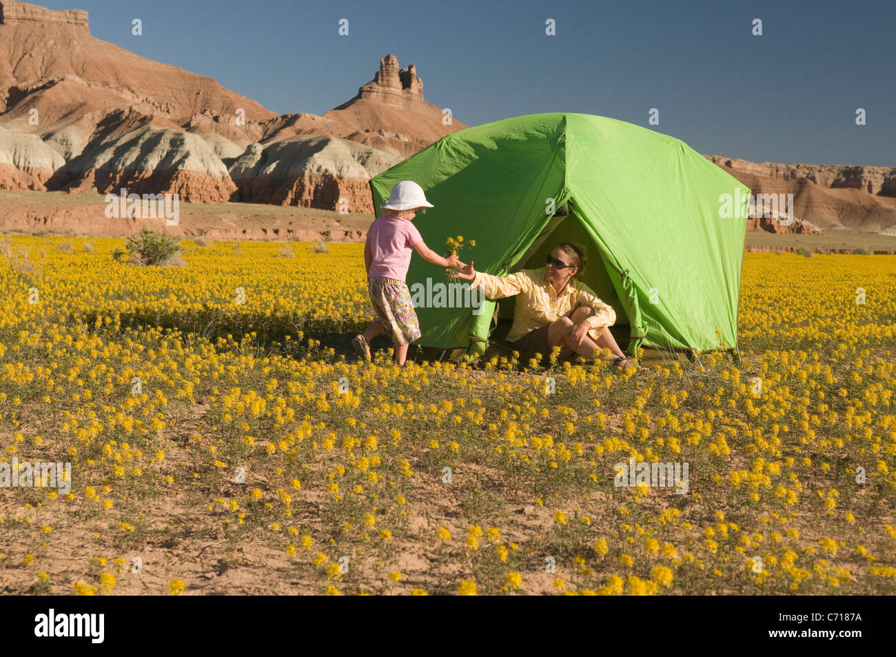 Figlia portando fiori per la madre in una tenda, Hanksville, Utah. Immagini Stock