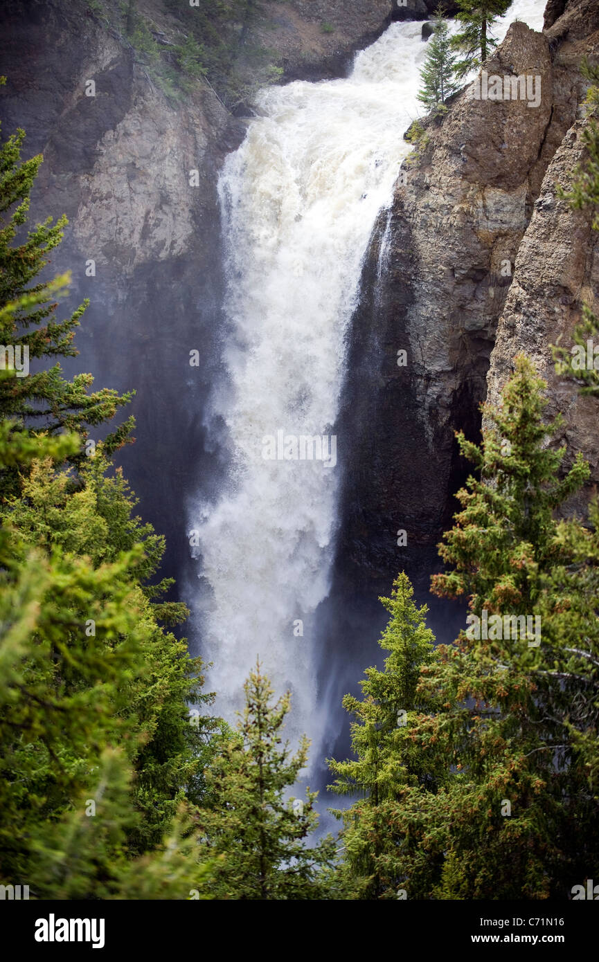 Torre caduta in corrispondenza del picco di flusso nel Parco Nazionale di Yellowstone, Wyoming. Immagini Stock