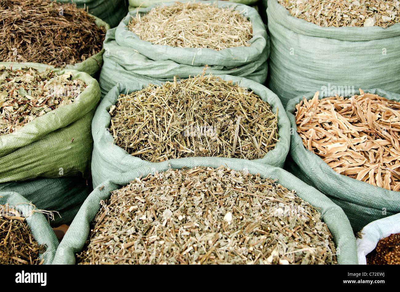 Erbe tradizionali nel mercato vietnam Foto Stock