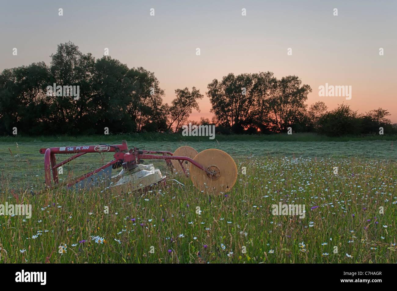 Prato di fieno con vogatore al tramonto Immagini Stock