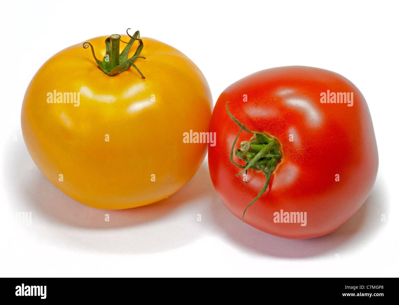 Il giallo e il rosso dei pomodori bistecca di manzo Immagini Stock