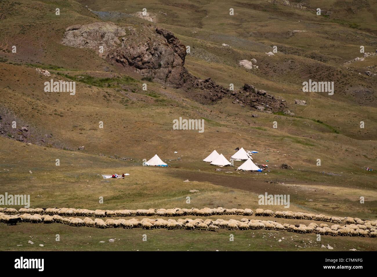 Şavaklar tribù nomadi in montagna Keşiş Erzincan Turchia Immagini Stock