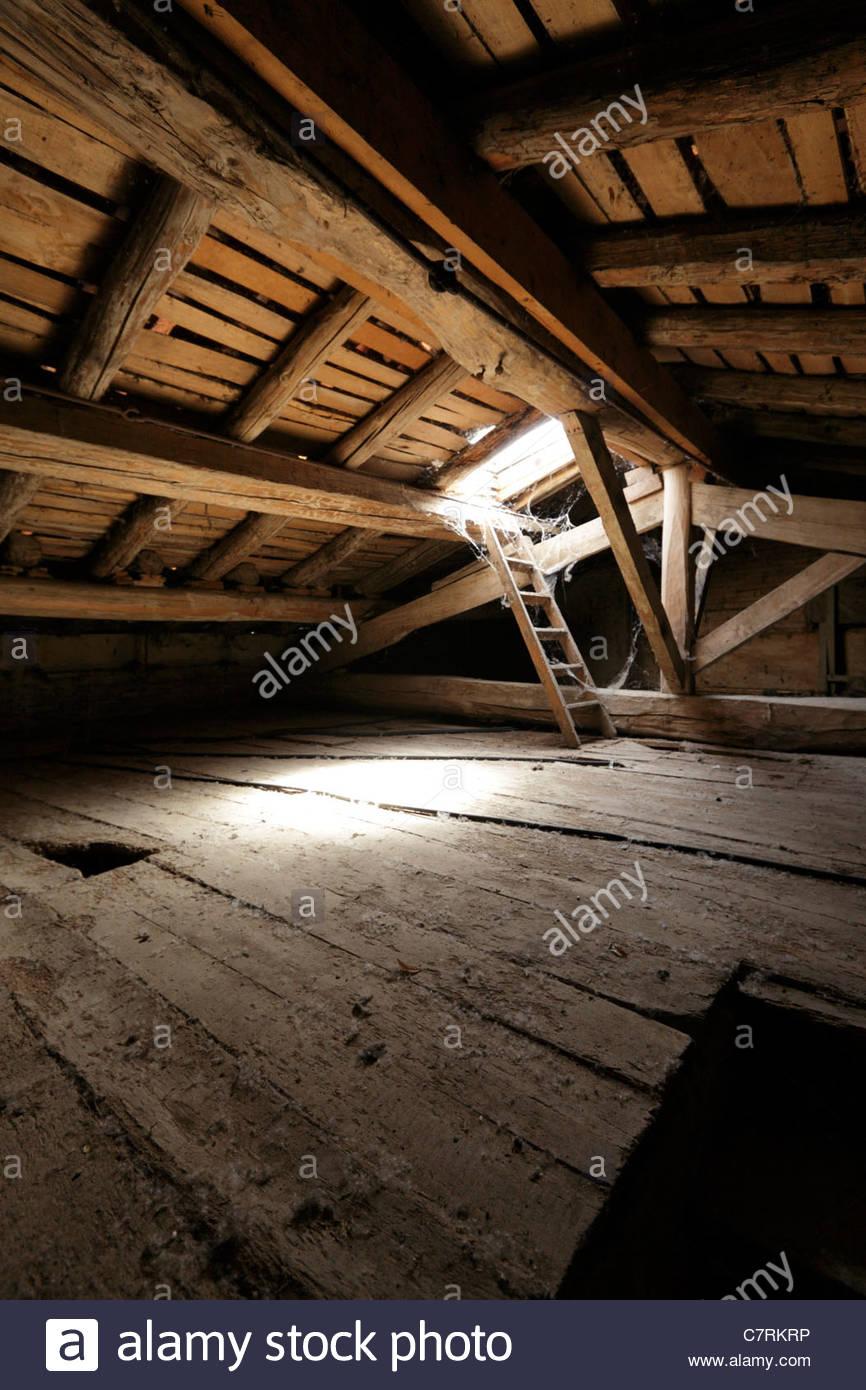Attico vuoto lo spazio sul tetto con lucernario Immagini Stock