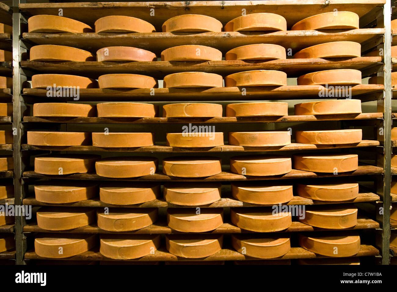 L'Italia, Valle d'Aosta, Valpelline, Fontina spazio di archiviazione Immagini Stock