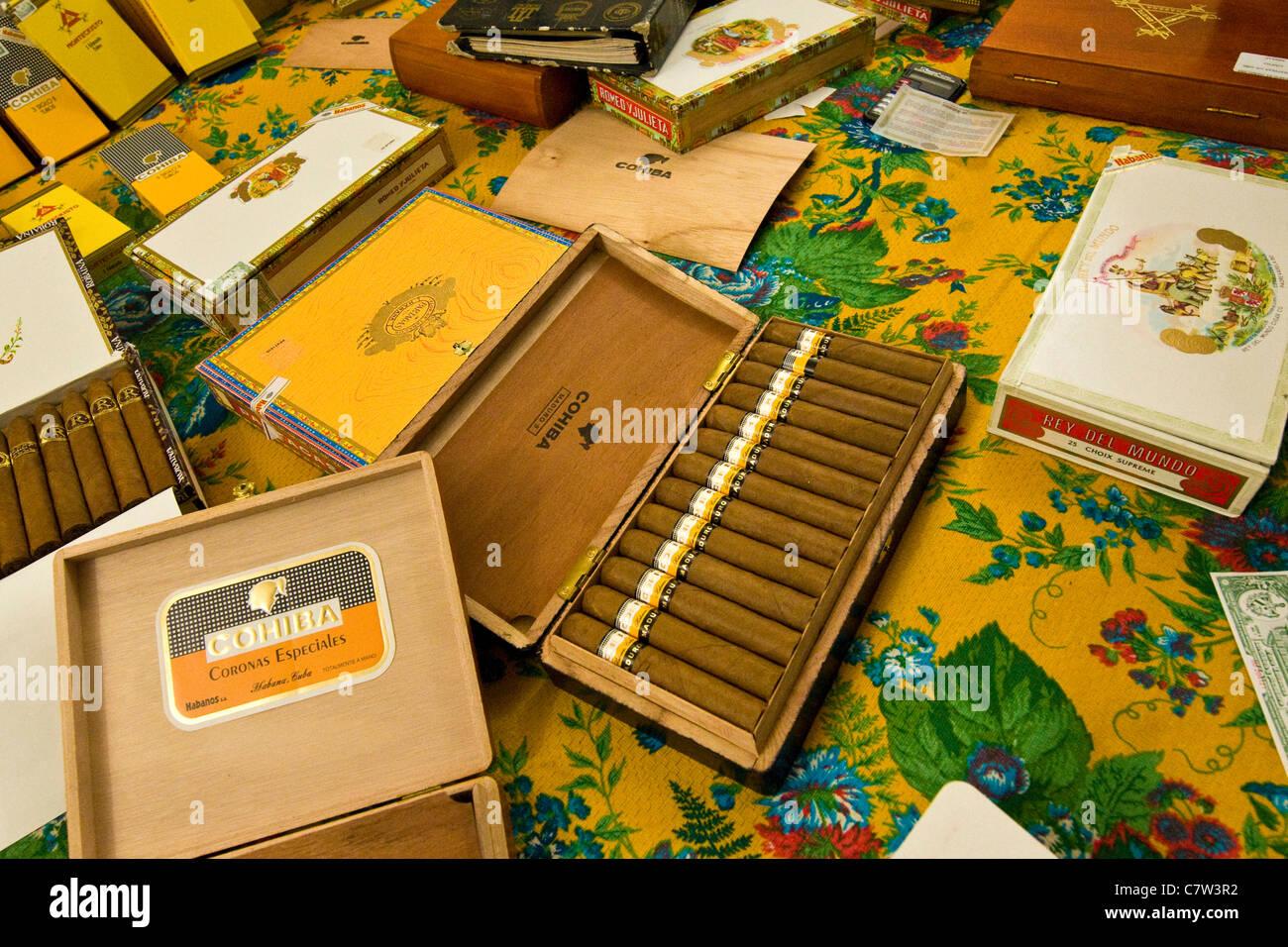 Cubani sigari sottili Immagini Stock
