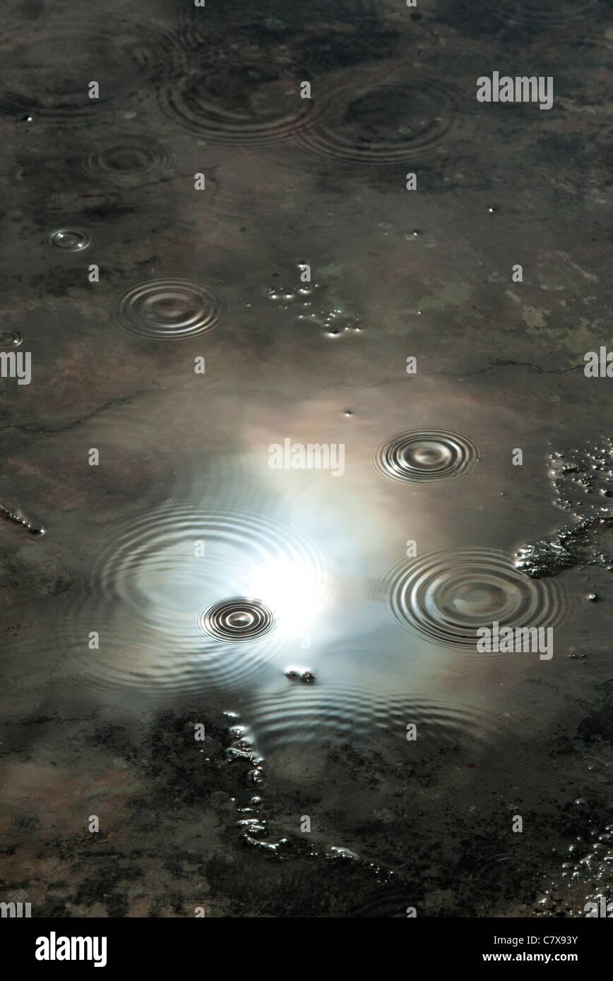 Gocce di pioggia in una pozza riflettente moody scuro cielo tempestoso. India Immagini Stock