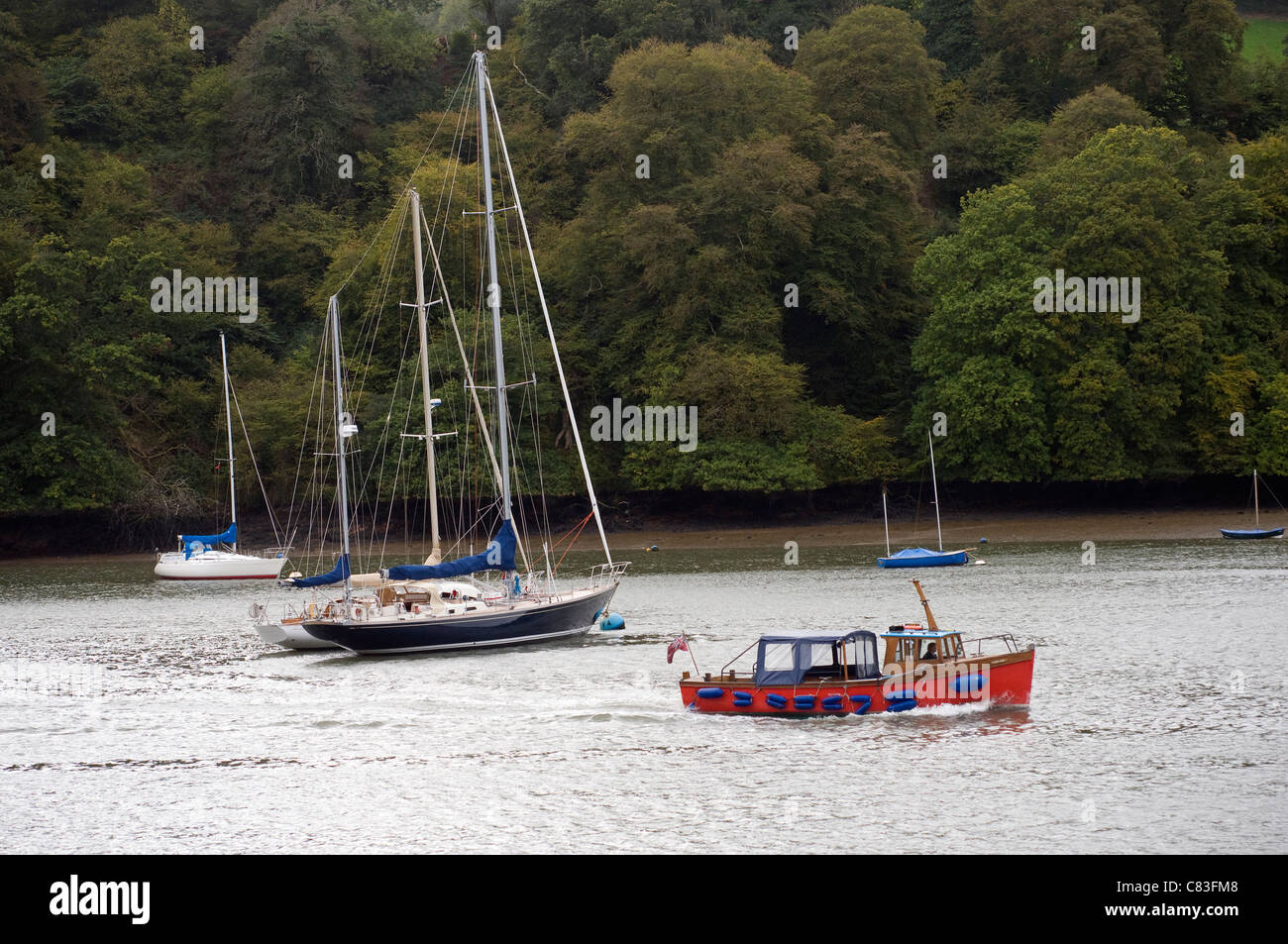 Traghetto Dittisham,azzurro acqua,spingere la barca galleggiante,l'imbarcazione,,Stazioni di panico,avrai bisogno Immagini Stock