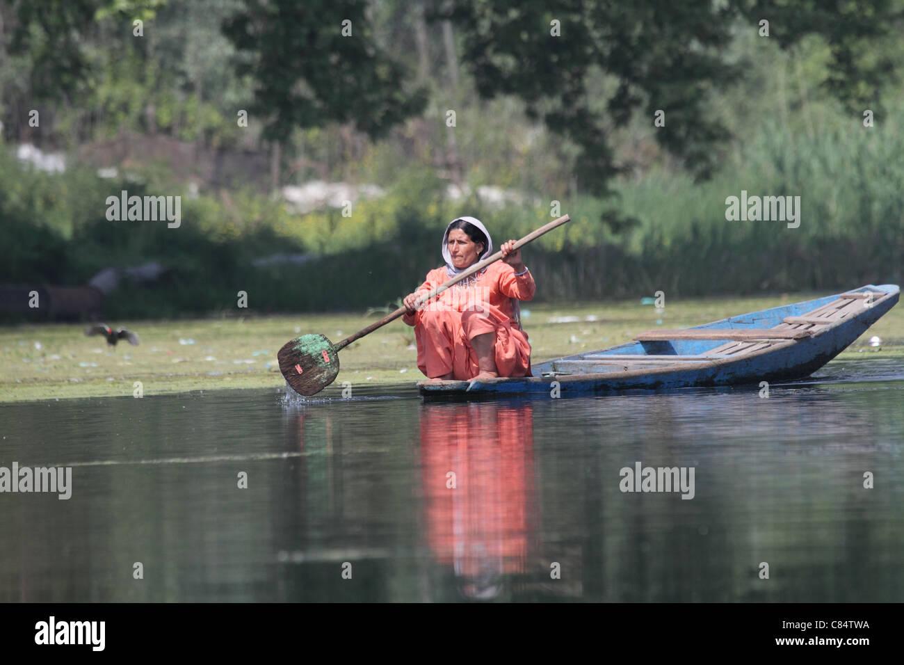 Donna in barca a remi su dal lago kashmir india Immagini Stock
