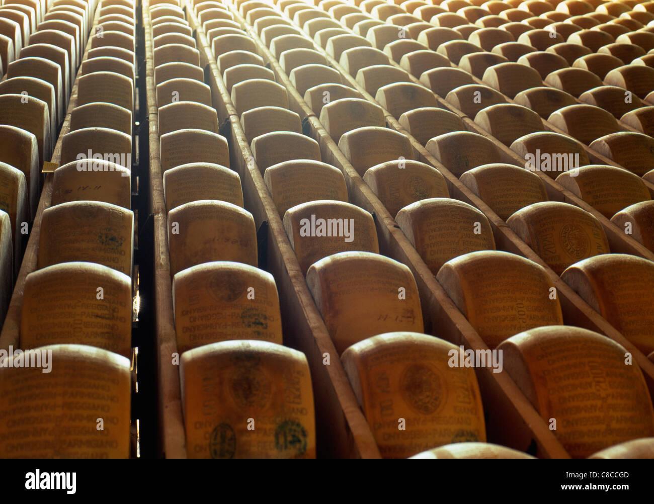 Formaggi parmigiano stagionatura Foto Stock