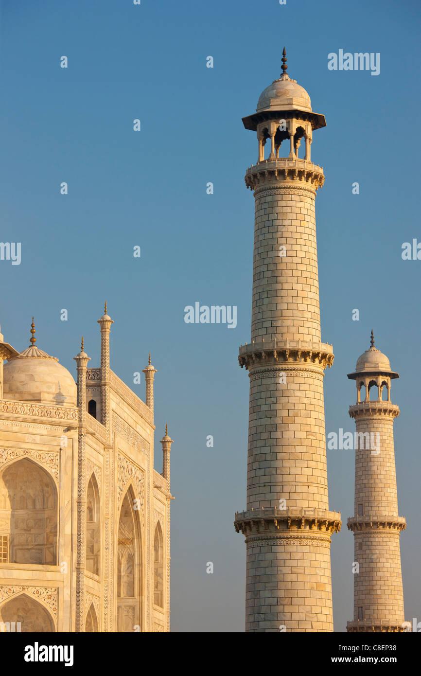 Il Taj Mahal mausoleo est visualizza dettagli, Uttar Pradesh, India Immagini Stock