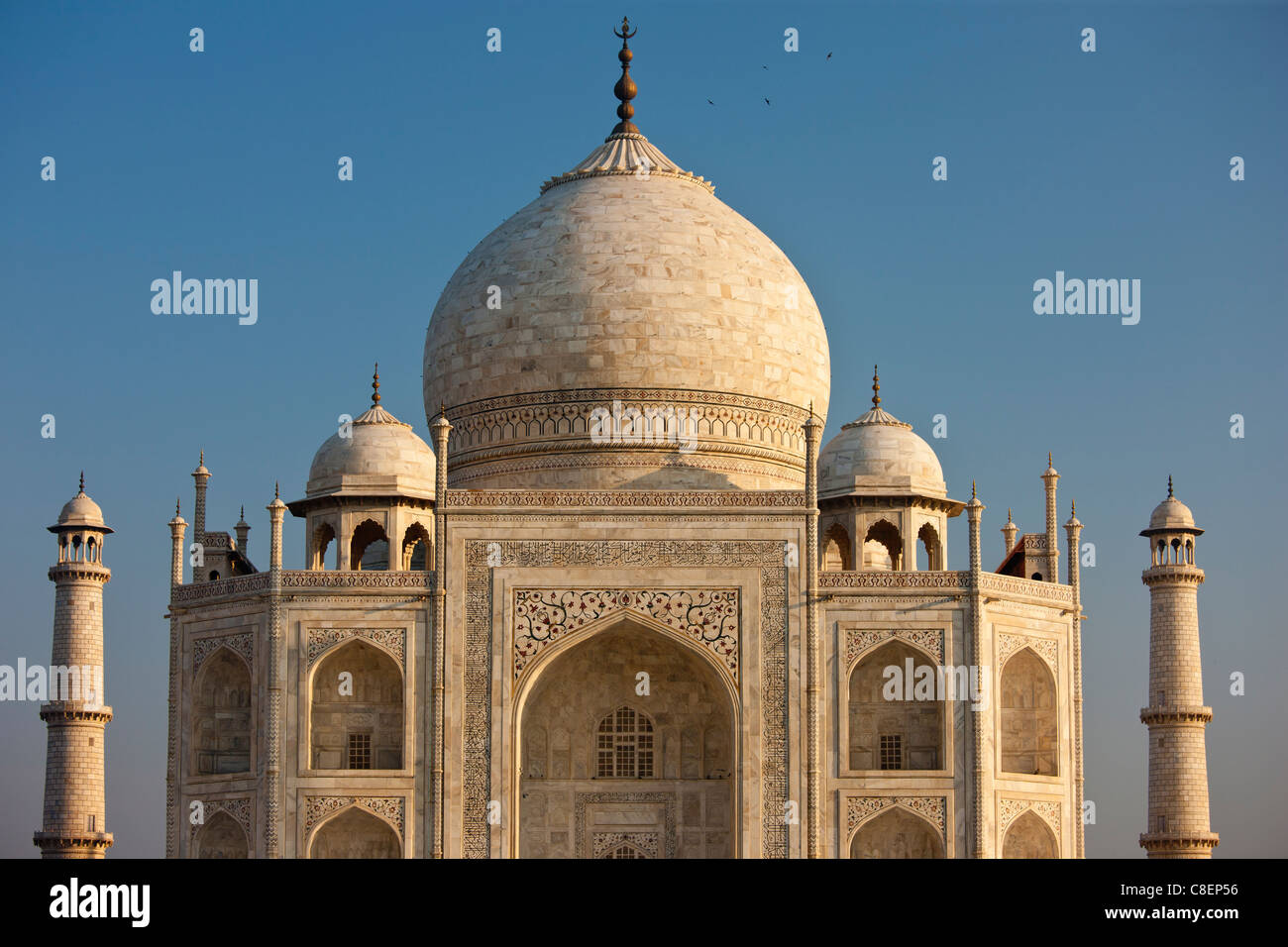 Il Taj Mahal mausoleo southern visualizza dettagli, Uttar Pradesh, India Immagini Stock