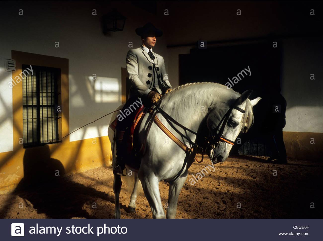 Un cavaliere a cavallo presso il Regio Maneggio a Jerez. Immagini Stock