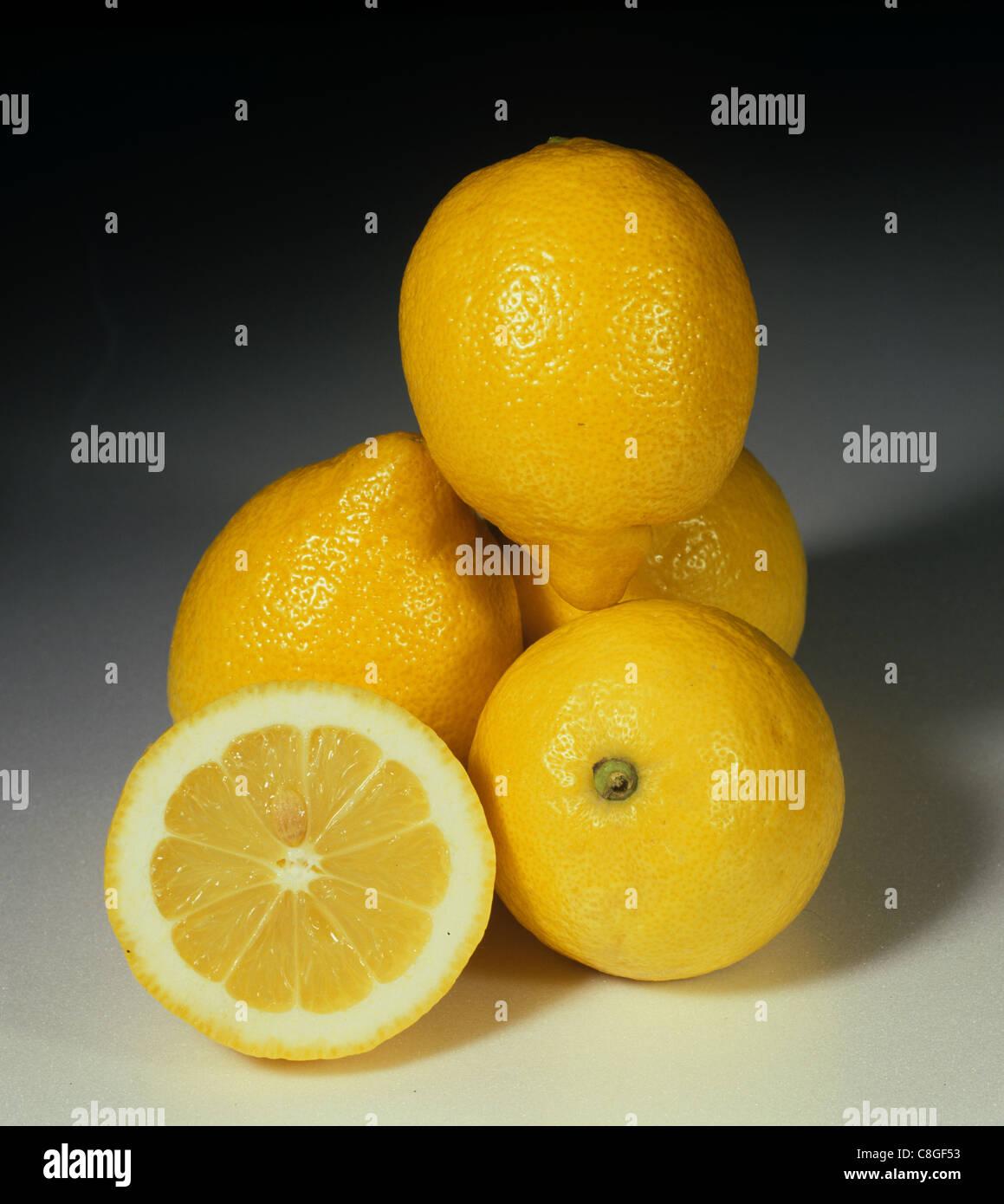 Tutta la sezione e gruppo di agrumi varietà di limone fino Immagini Stock