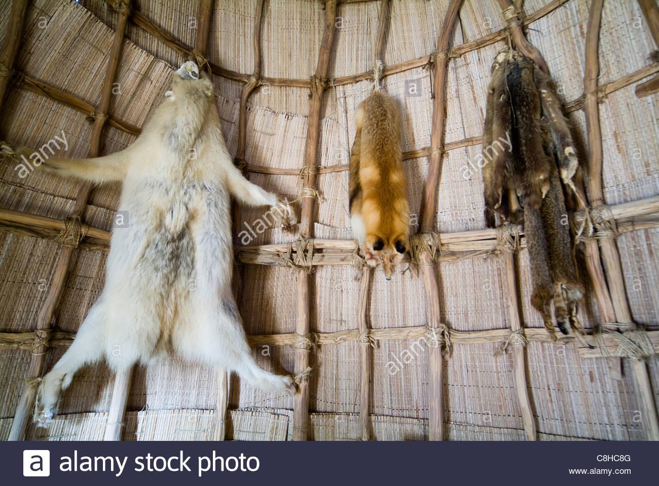 Jamestown Settlement replica nativa della casa americana fatta di legno e stuoie tessute. Immagini Stock