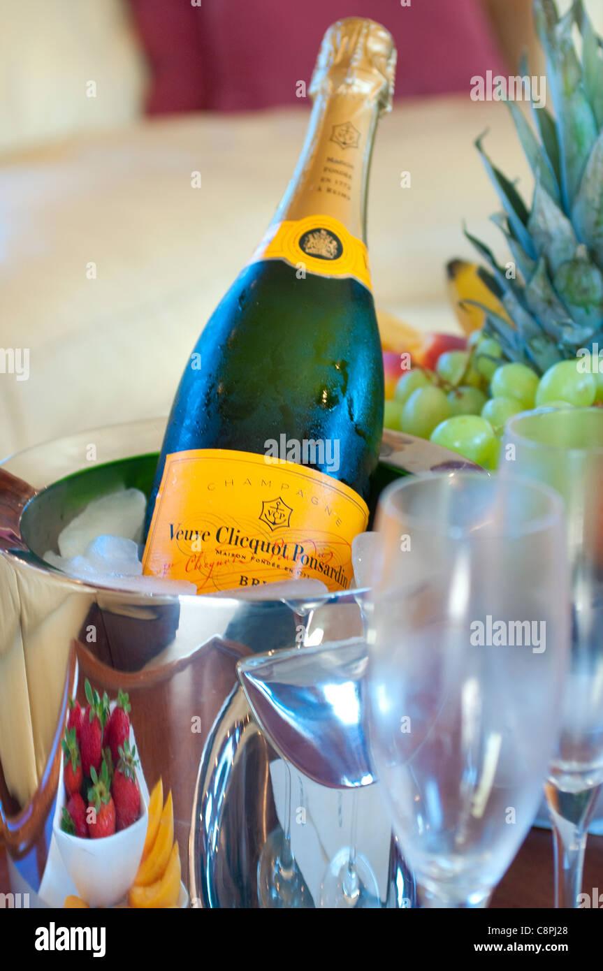 Champagne nel Secchiello per ghiaccio Immagini Stock