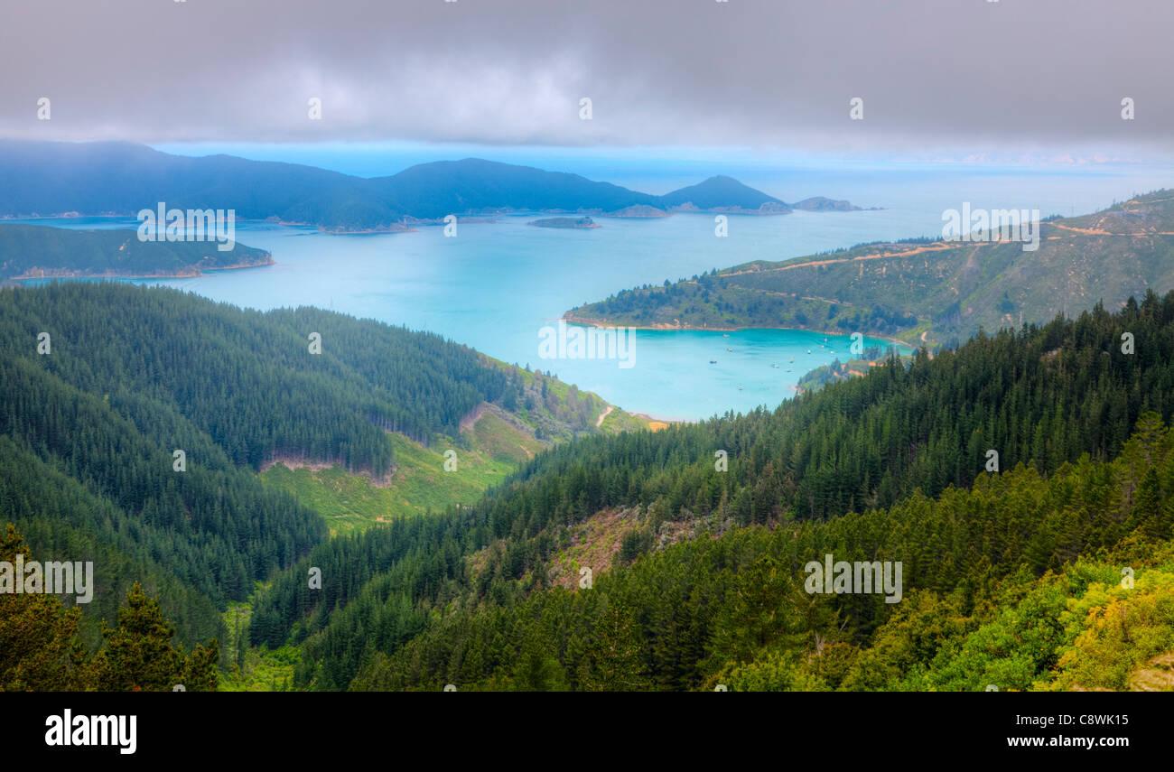 Vista panoramica di Oyster Bay vicino a Picton in Nuova Zelanda Immagini Stock