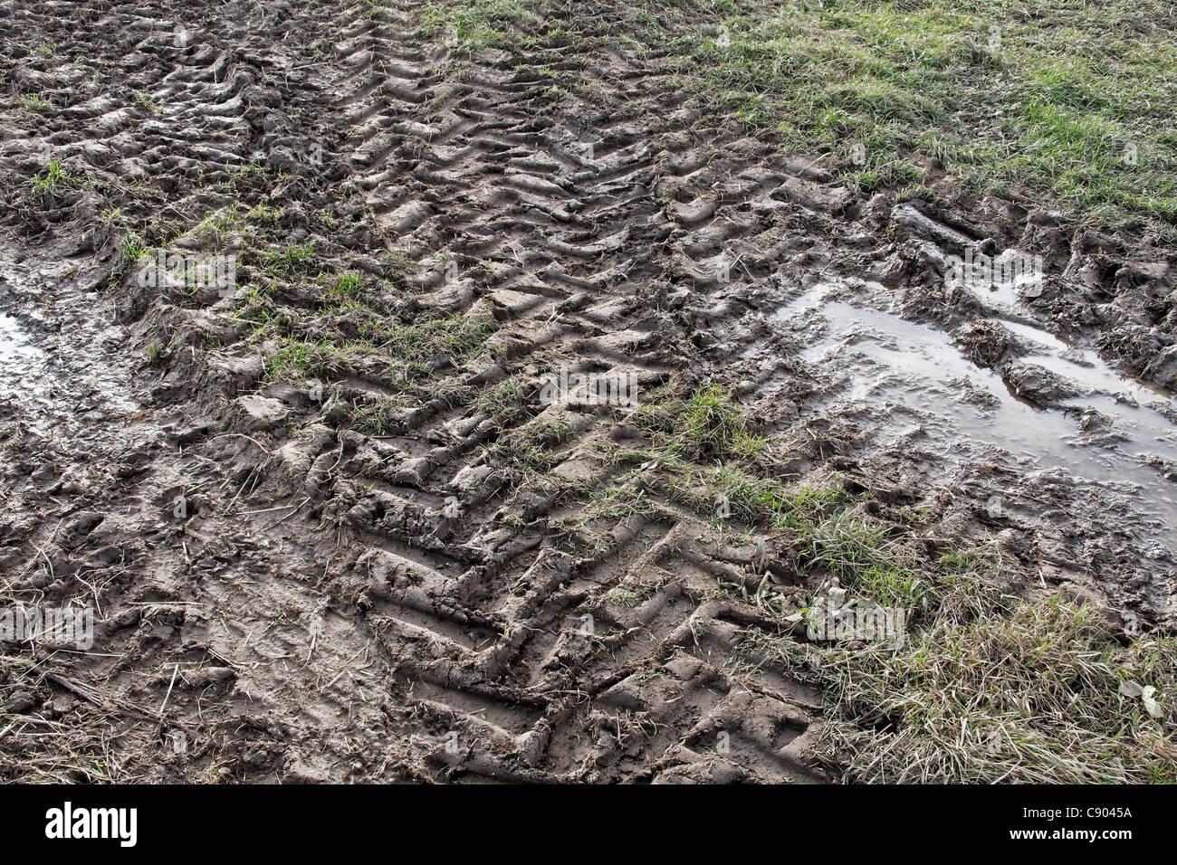 I cingoli del trattore nel fango Immagini Stock
