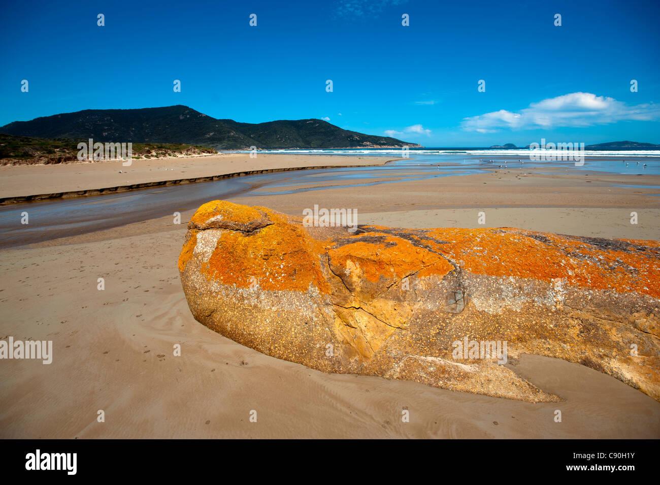 Oberon Bay, Wilsons Promontory National Park, Victoria, Australia Immagini Stock