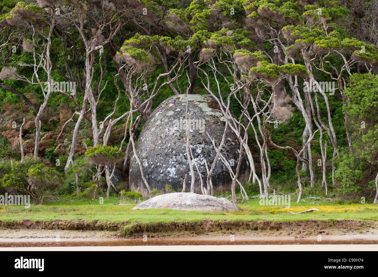Rocce di granito a fiume di marea, Wilsons Promontory National Park, Victoria, Australia Immagini Stock