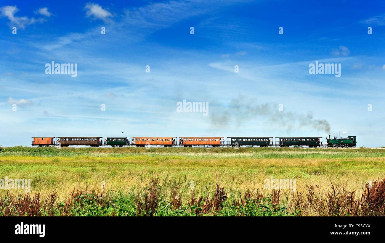 Treno storico: le chemin de fer de la Baie de Somme, Francia. Immagini Stock
