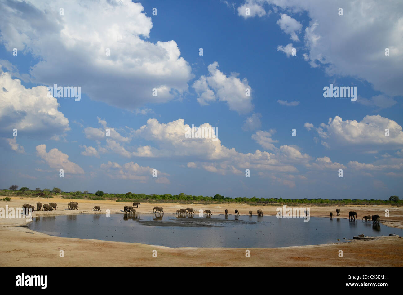 Lo Zimbabwe è un paese di piccole dimensioni che vanta una incredibile varietà di paesaggi e di animali. Immagini Stock