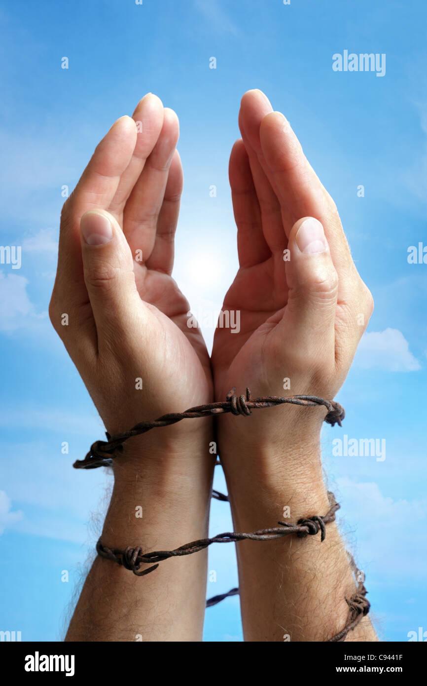 Mani legate con filo spinato Immagini Stock