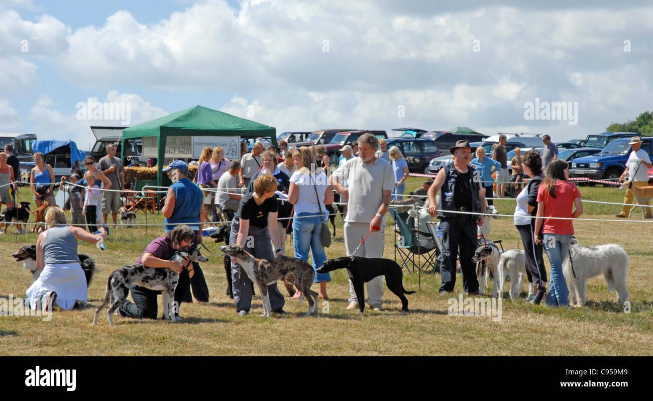 Un paese dog show solo uso editoriale. Tenuto a sfere percorrono nel Sussex. Immagini Stock