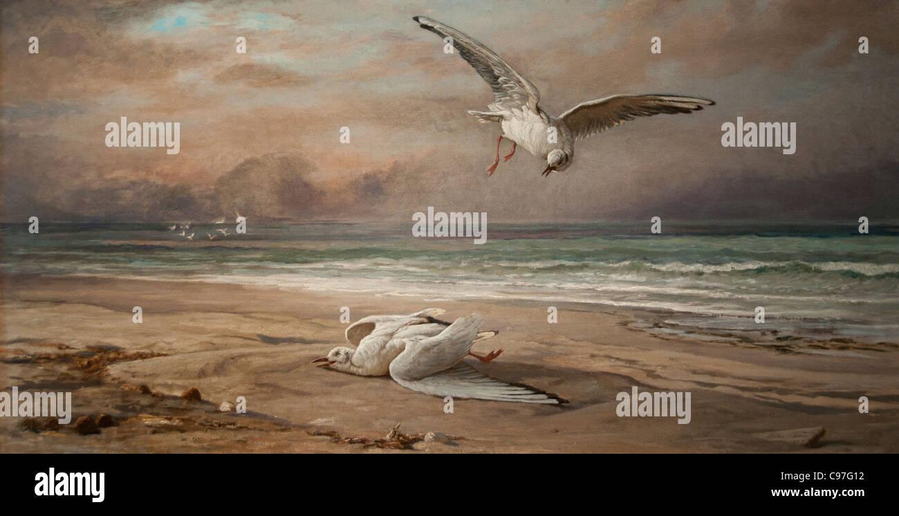 Il morire Sea Gull 1879 da Elihu Vedder British Immagini Stock