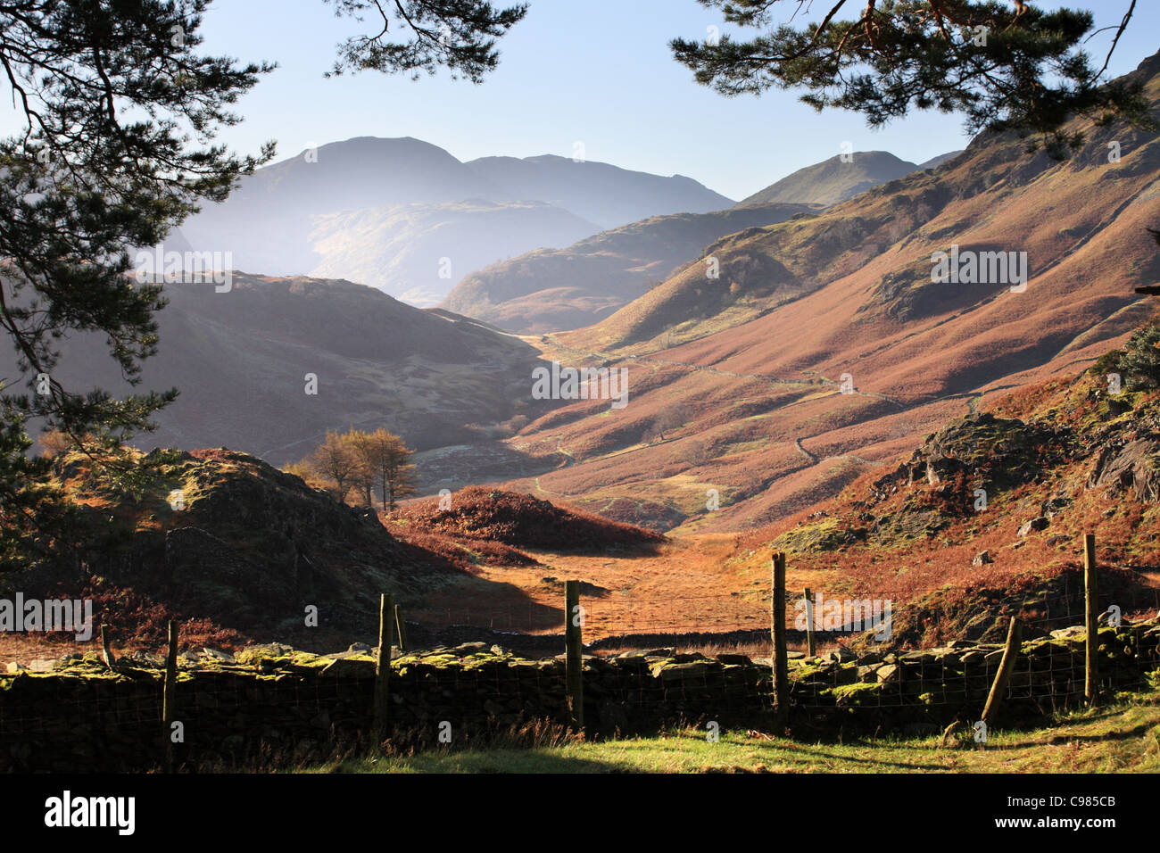 Borrowdale dalla rupe del castello in autunno Lake District inglese, Cumbria, Regno Unito Immagini Stock