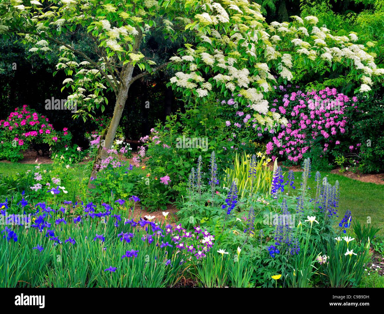 Grande Pagoda Struttura Sanguinello e fiori a Schreiner dell'iride giardini. Brooks, Oregon Immagini Stock
