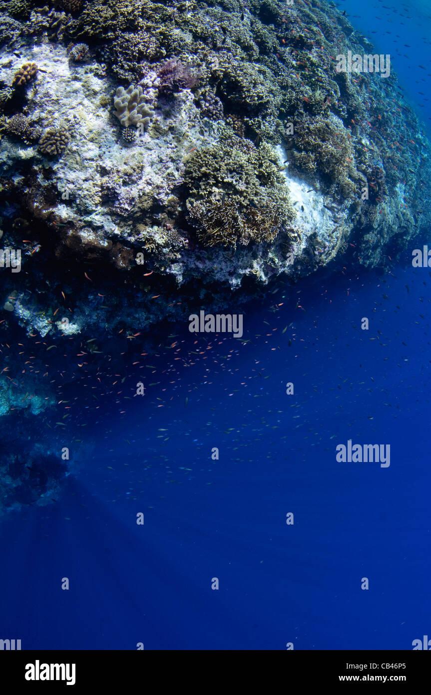 Drammatici cali di corrente verticale, Pulau Penyu, Banda Mare, Indonesia Orientale, Oceano Pacifico Immagini Stock