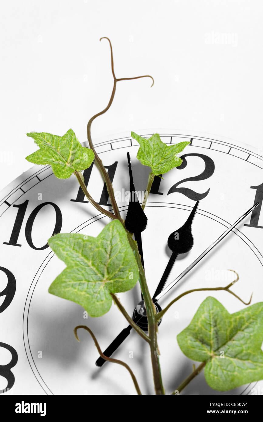 Orologio e ivy, il concetto di tempo Immagini Stock