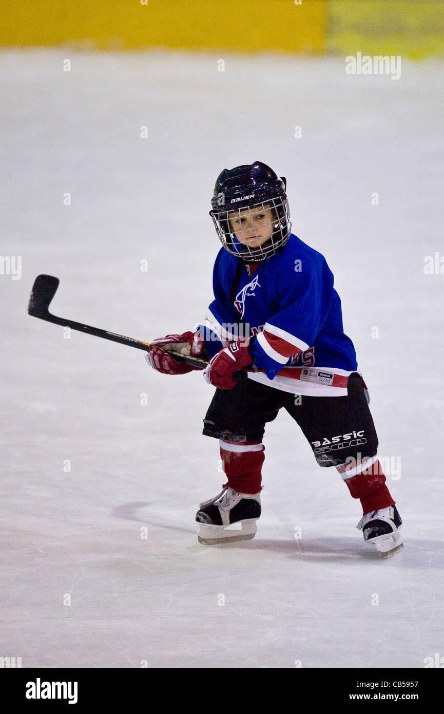 I bambini di hockey su ghiaccio della formazione Immagini Stock
