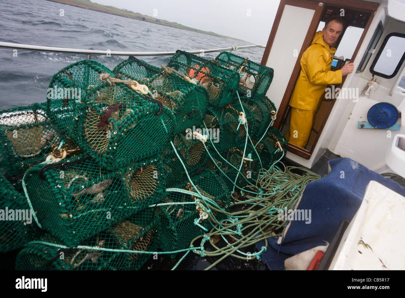 Pescatore locale Neil Cameron vele verso la sua posizione di cantra per essere riempito di velluto e granchio verde Immagini Stock