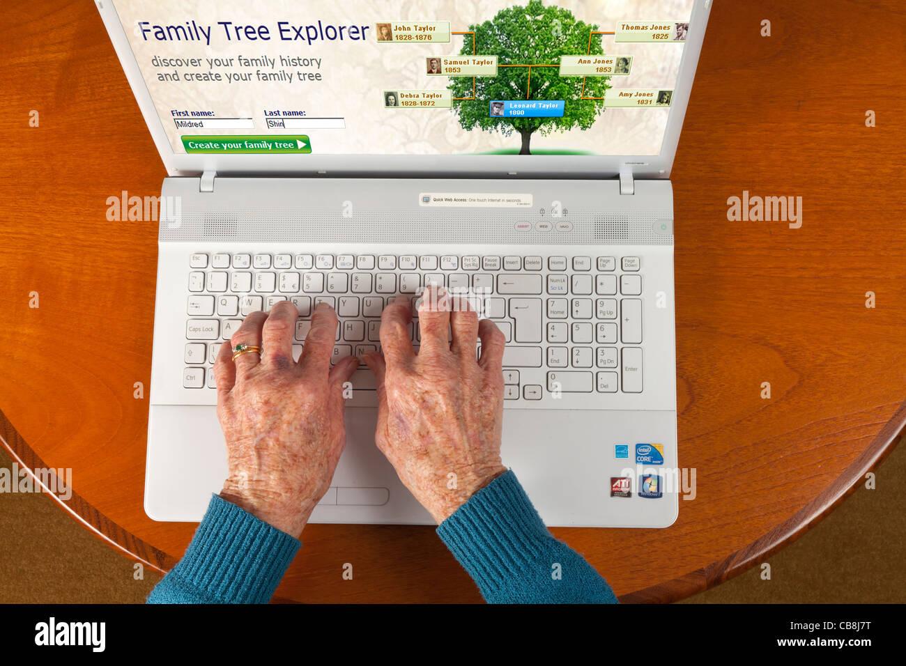 Anziani di sesso femminile mano utilizzando un computer portatile per verificare l'albero di famiglia tramite Immagini Stock