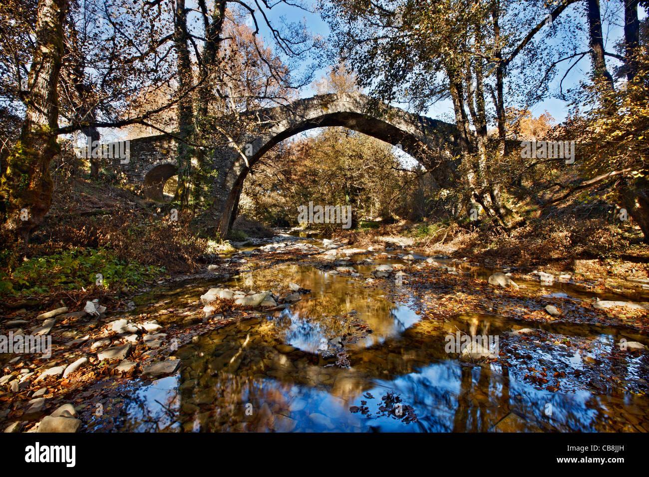 Il Pitsionis (o 'Pitsioni'), un antico ponte in pietra, vicino al villaggio di Kipoi, regione di Zagori Immagini Stock