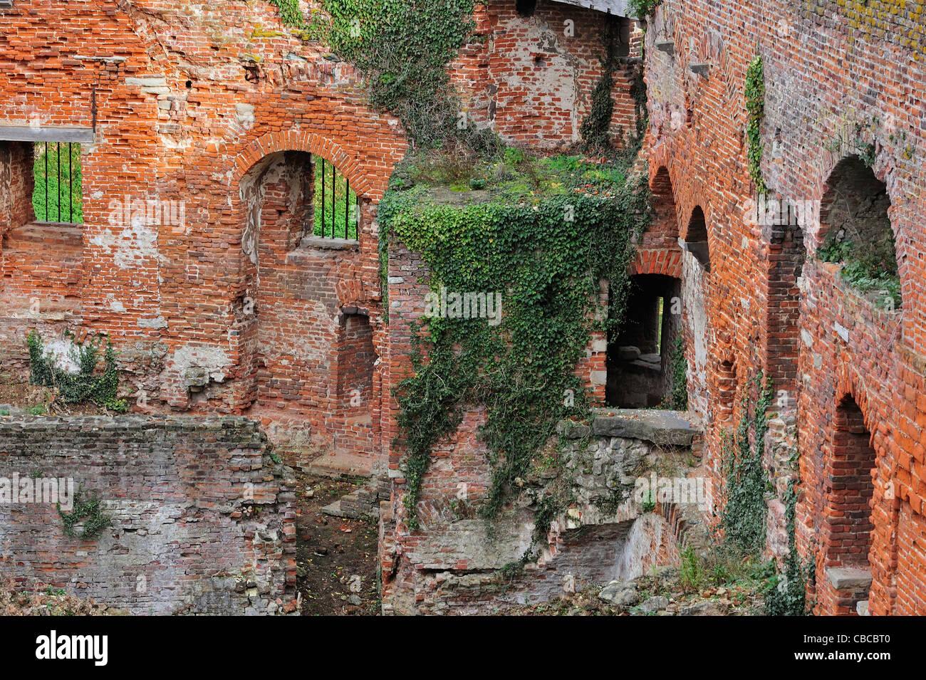 Pareti Interne In Mattoni : Pareti interne di mattoni rossi in rovine coperte di edera del