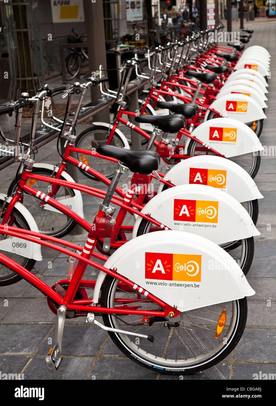 Una linea di biciclette a noleggio a un velo stazione nel centro di Antwerp, Belgio Immagini Stock