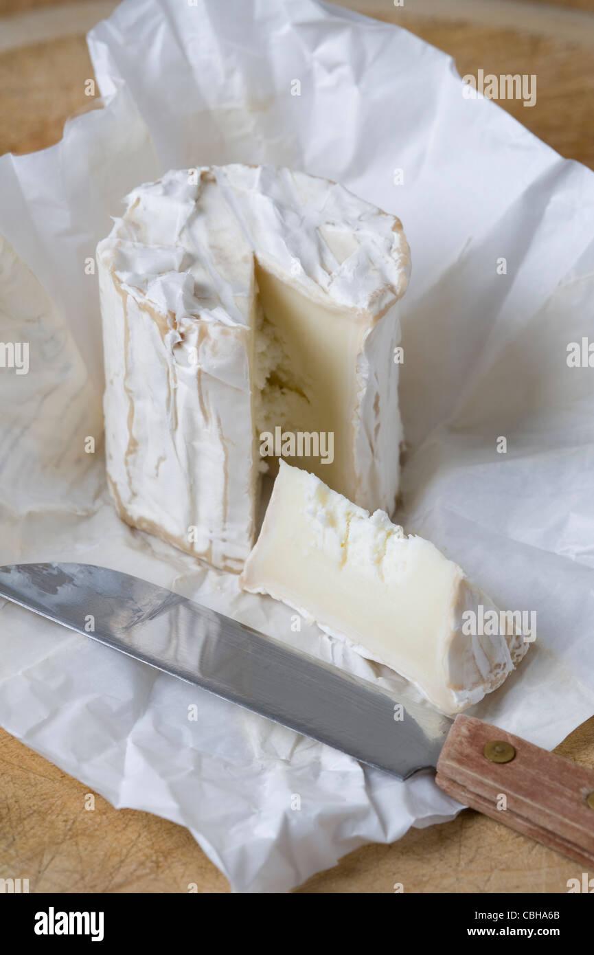Un unico formaggio di capra Immagini Stock