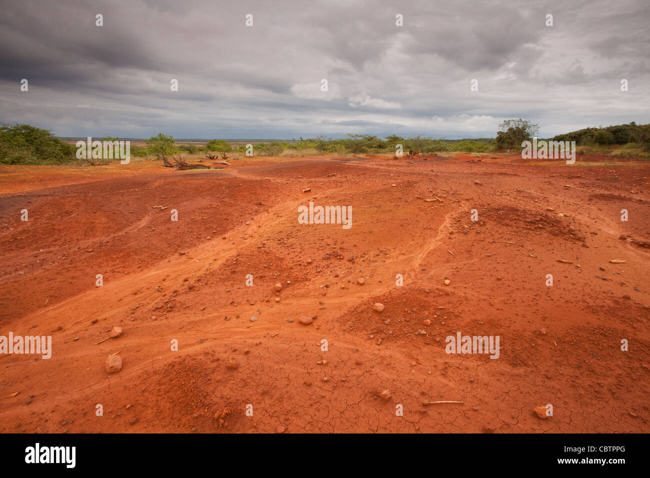 Area disboscate e suoli erosi in Sarigua national park (deserto) in Herrera provincia, Repubblica di Panama. Immagini Stock