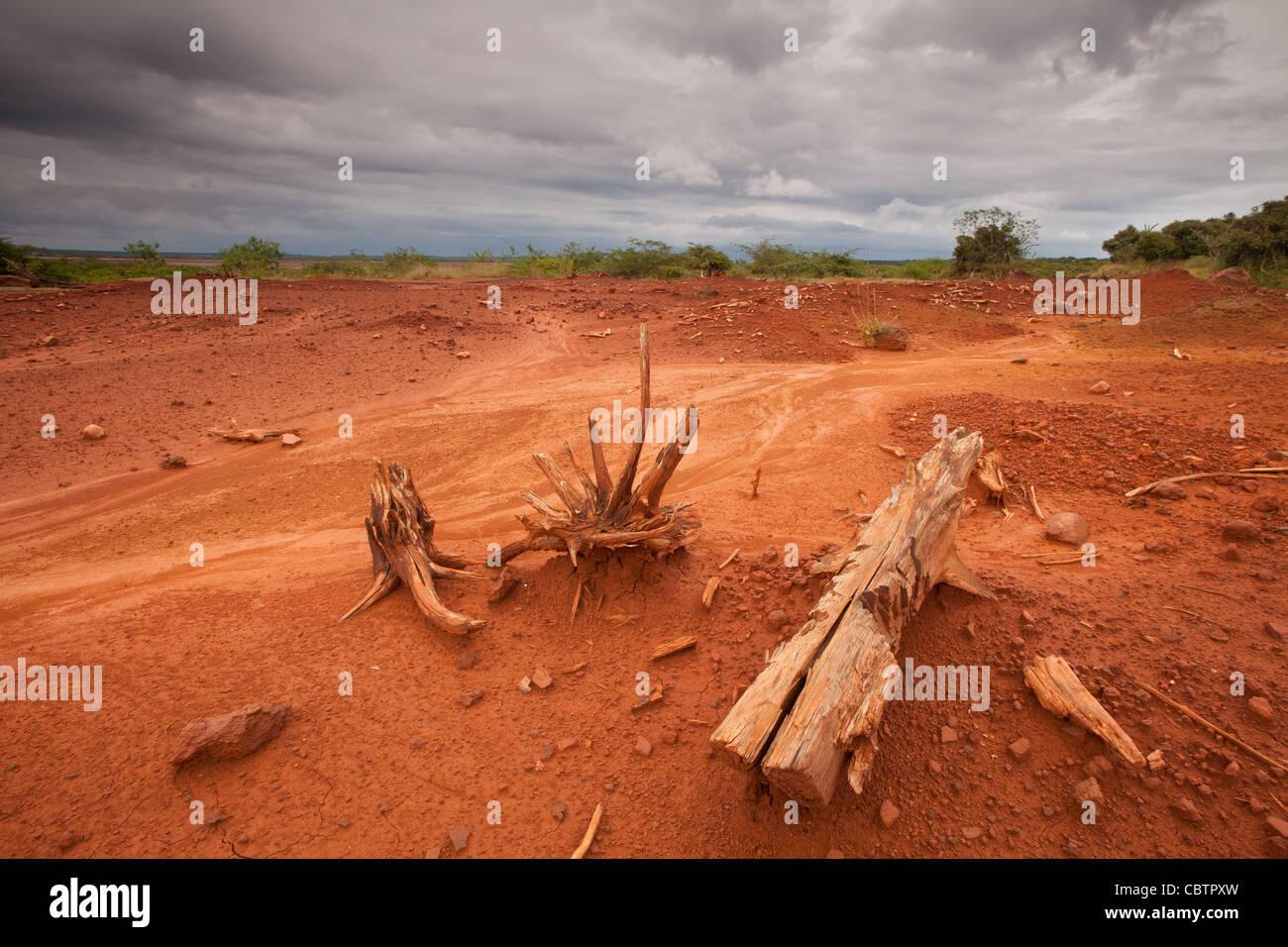 Suoli erosi in Sarigua national park (deserto) in Herrera provincia, Repubblica di Panama. Immagini Stock